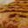 12hamburger.nl - Huur nu een echte Amerikaanse hamburgerkraam! De hamburgerkraam ziet er leuk en origineel uit en is geschikt voor ieder evenement!