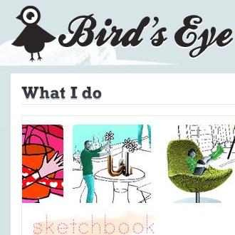 Bird's Eye Design
