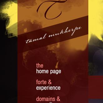 Tamal Mukherjee