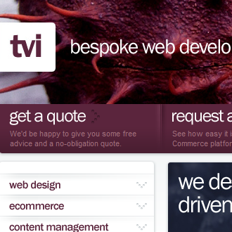 Web Design by TVI